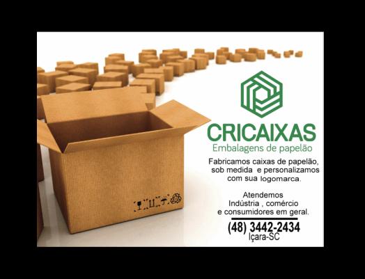 CRICAIXAS CAPA PNG